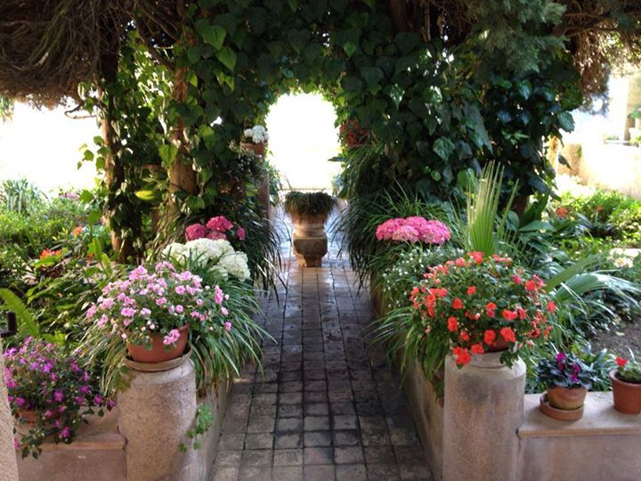 Another dream garden..this one's not in Chelsea..as you might have gathered!
