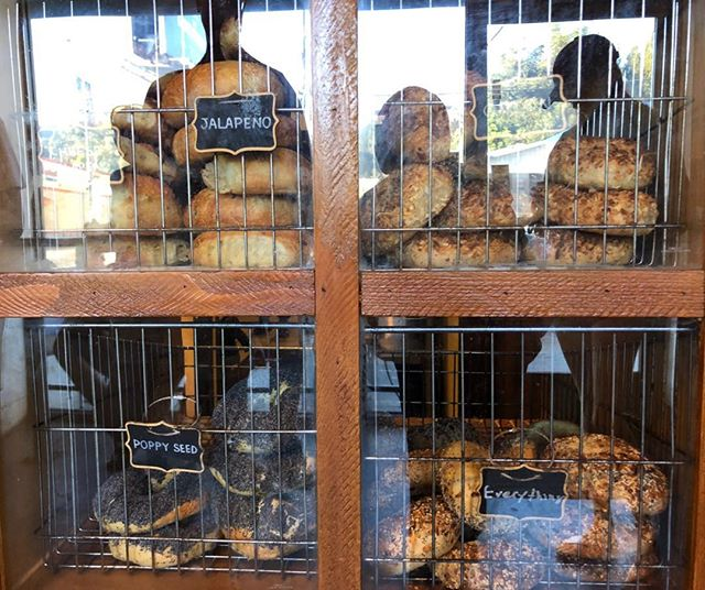 Tangential distraction from this crazy troubled planet! Jalapeño, Poppyseed, Everything and Plain… These bagels are so eclectic they have to be kept in cages!!!